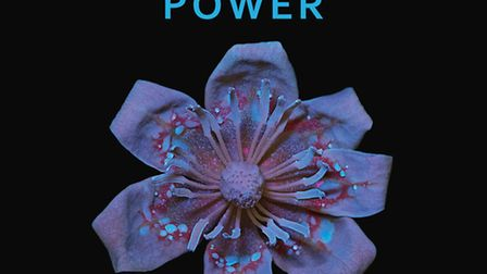 Pollination Power by Heather Angel, published by Kew. PA Photo/Kew/Heather Angel