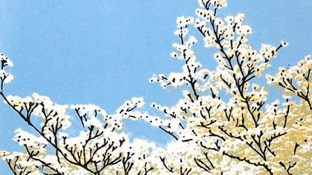 Spring Blossom by Lucy Chapman