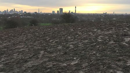 The muddy aftermath of New Year's Eve celebrations on Primrose Hill. Picture: Jason Pittock