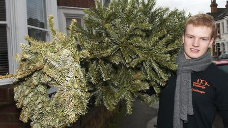 17-year-old West Hampstead schoolboy Bryce Puszet recycling Christmas trees for charity. Picture: Ni