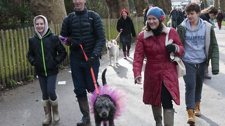 Valentines Day dog walk in aid of dog rescue charity, All Dogs Matter. Picture: Nigel Sutton