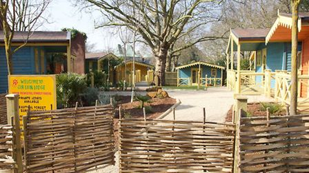 Visitors will soon be able to stay overnight in a safari lodge within roaring distance of the lions