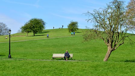 The attack took place on Primrose Hill