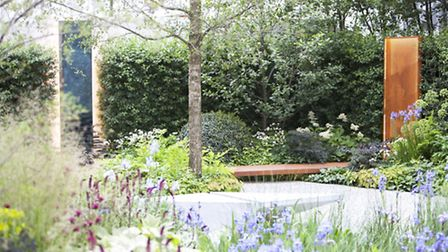 MA13 RBC Waterscape Garden designed by Hugo Bugg. PA Photo/RHS/Annabelle Taylor