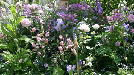 Soft hues, as featured in the LG Smart Garden, could catch on. PA Photo/Hannah Stephenson