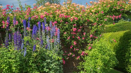 The flower border at Colmore House. PA Photo/Judi Lion.