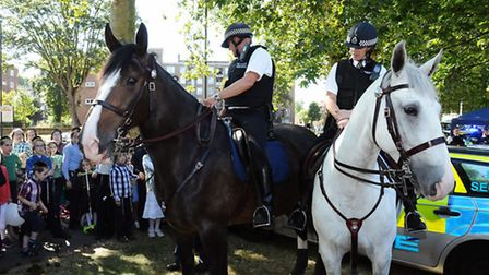 Police horses on display at the Shomrim Open Day