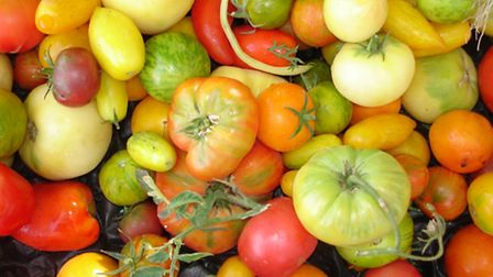 Tomatoes are a versatile summer friendly fruit
