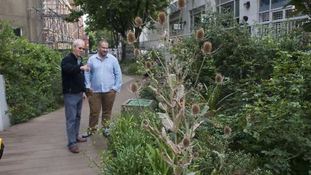 Ricci de Freitas and Ian Drummond at Marchmont Community Garden