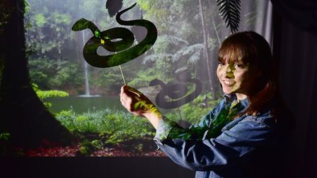Adele Knight in the Flipside Festival Amazon rainforest with her shadow puppet. Picture: Nick Butche