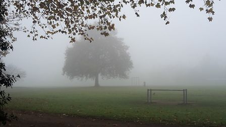 Mist in Millfields Park, Lea Bridge Road. Picture: Will McCallum