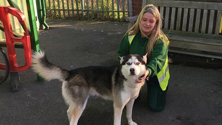 Kelly Edmondson with the husky found in Dalston Lane