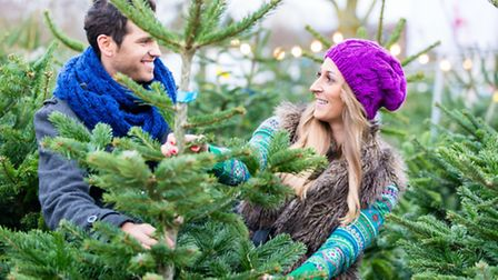 Ask to have the tree taken out of the netting so you can see the shape. PA Photo/thinkstockphotos