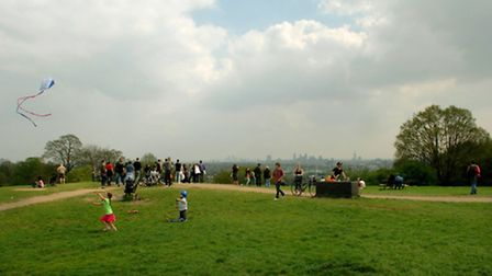 The incident occured on Hampstead Heath Picture: Matthew Bake/PA