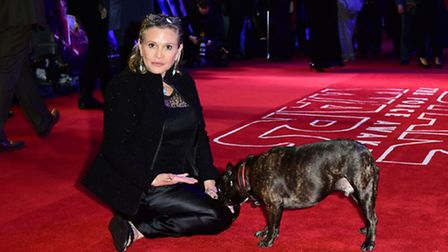 Carrie Fisher, seen here with her dog Gary, was briefly tempted by Hampstead when she was house hunt