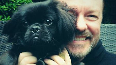 Ricky Gervais with Wooky from All Dogs Matter Picture: ADM