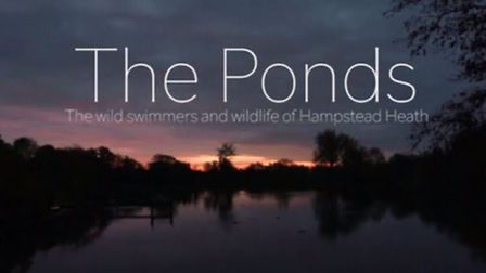 The opening title of the documentary's trailer Picture: Patrick McLennan