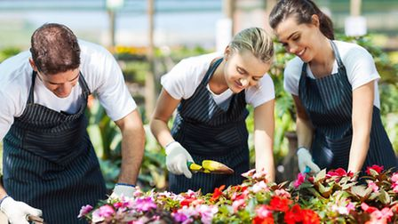 People partaking in a gardening course together. PA Photo/thinkstockphotos