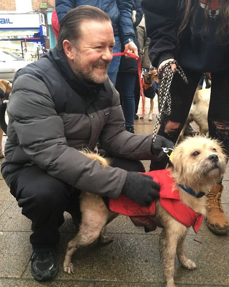 Hampstead comedian Ricky Gervais could not miss the charity dog walk