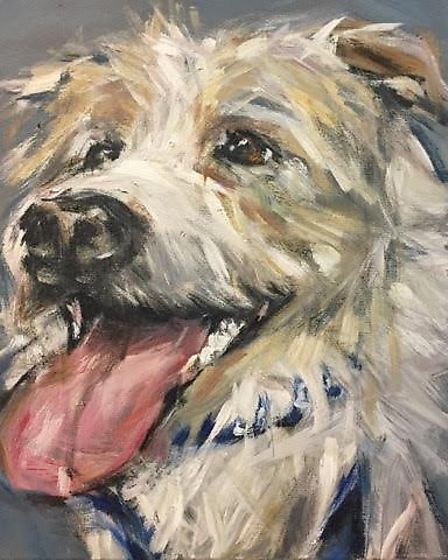 Olly, the superstar Jack Russell, painted live on air by Claire Thorogood