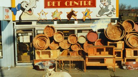 Doreen's Pet Centre in Morning Lane, circa 1995.