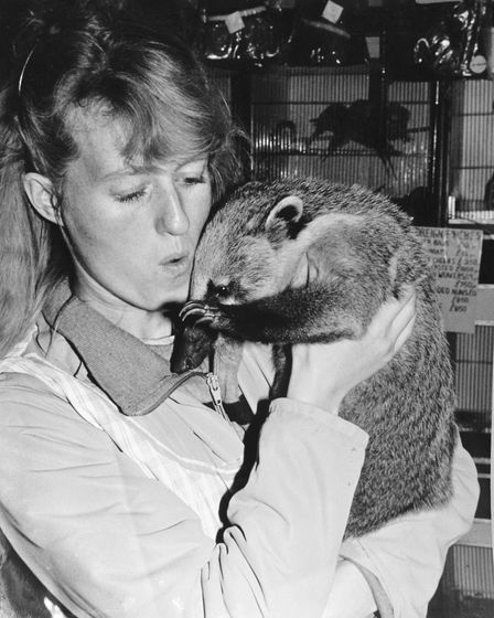 Doreens daughter Sheralee Hood with Doreens pet coatimunday called Twizzle in the store, circa 199