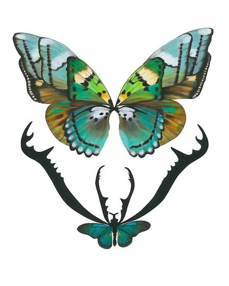 Muswell Hill local Jess Albert's Hybrid Wings print in green
