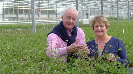 Raymond Evison with Hannah at his clematis nursery, Guernsey.