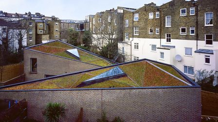 The living roofs of Otts Yard were designed by Arabella Lennox-Boyd with the neighbours' views in mi