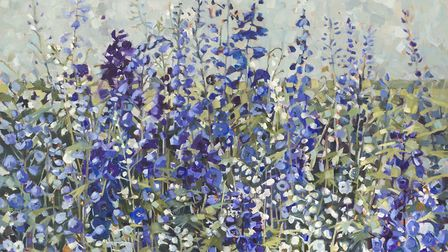 Anne-Marie Butlin's Delphiniums. Picture: Duncan Phillips