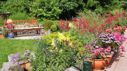 Spruce up your patio with a range of flowers and plants