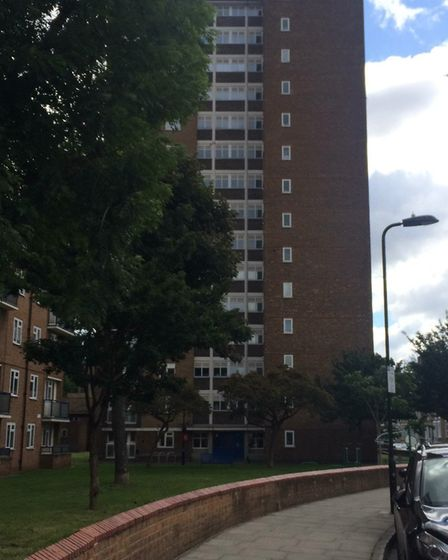 The Trelawney Estate in Hackney where the family was found dead. Picture: Emma Bartholomew