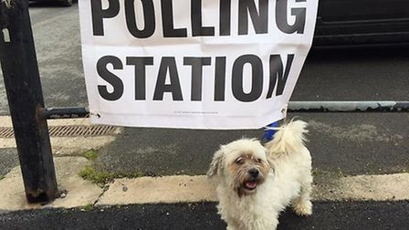 Once more unto the polls we go [Photograph by @gerrymc123]