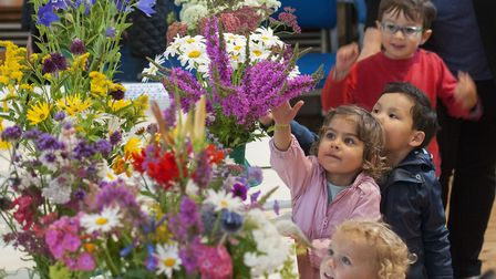Very young visitors to Saturday's Highgate Horticultural Society summer show. Picture: NIGEL SUTTON