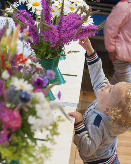 Another youngster admires the displays. Picture: NIGEL SUTTON