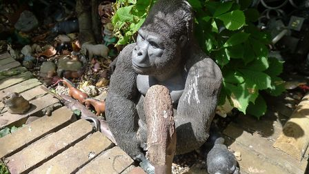 A gorilla guards the entrance to Bill Oddie's garden