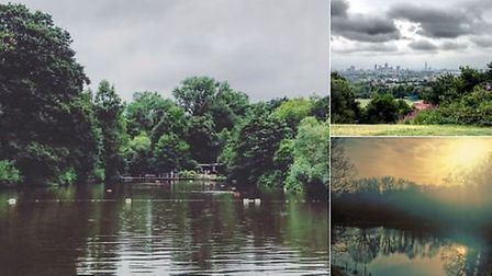 The beauty of Hampstead Heath from various angles, posted online as part of Love Parks Week. Photo: