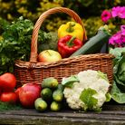 Here's how to get the most from your garden or allotment, and make your crops stay fresh for longer