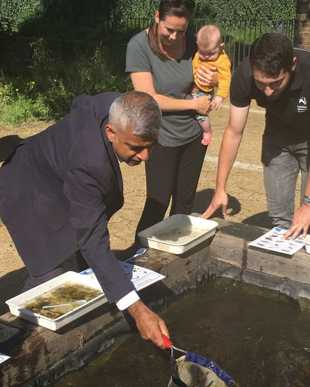 Sadiq Khan takes part in a bit of pond-dipping. Picture: Sam Gelder