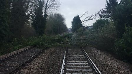Trains between Lowestoft and Norwich were disrupted this afternoon after trees fell on the line at O