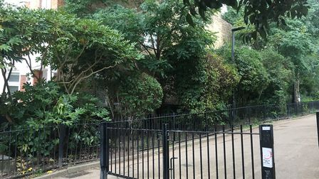 The 'dangerous' wall is behind these trees on an entrance to the Heath Picture: Nathan Louis