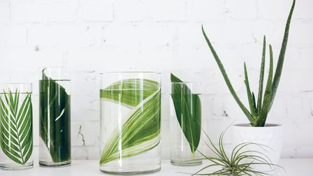 Cylinder vases used with only one leaf placed in the water. The look is simple and very pretty. Feat
