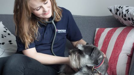 PawSquad offer check-ups and treatments from the comfort of your home