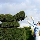 Try your hand at topiary whilst the sun's still shining with our how-to guide