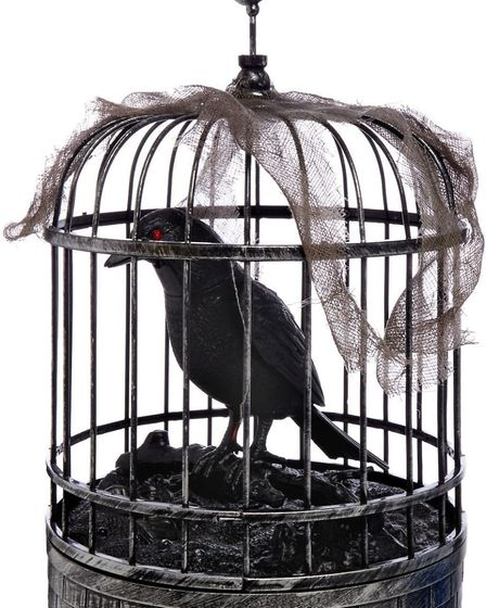 LED animated zombie crow in cage, �10, Asda