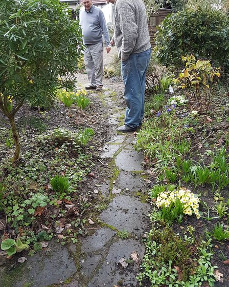 Garden path that needs repointing