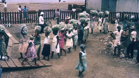 Women loading bananas from the Jamiacan port of Port Antonio onto TSS Golfito. This steamship was ow