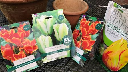 Tulips are best planted in groups of at least three