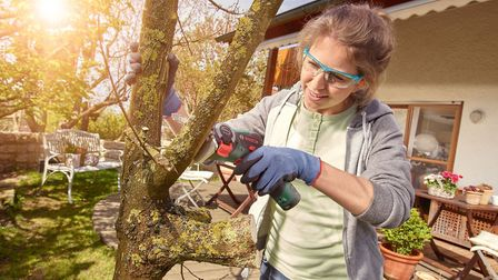 This cordless multi-saw can cut through branches and wood, ideal for pruning