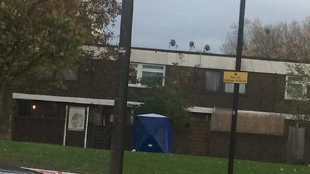 A police tent has been erected in Monteagle Way. Picture: Emma Bartholomew